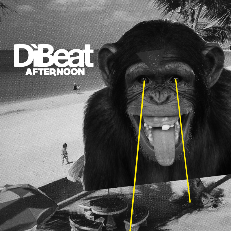 DiBeat Afternoon
